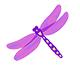 dragonfly-sm